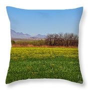 Arizona Spring Throw Pillow by Methune Hively