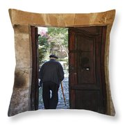 Arriving Home Throw Pillow by Douglas J Fisher