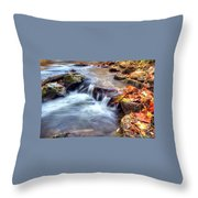 Art For Crohn's Hdr Fall Creek Throw Pillow by Tim Buisman