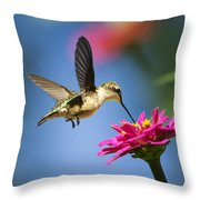 Art Of Hummingbird Flight Throw Pillow by Christina Rollo