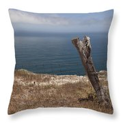 Artist's Retreat Throw Pillow by Amanda Barcon
