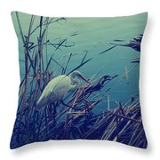 As The Light Fades Throw Pillow by Laurie Search