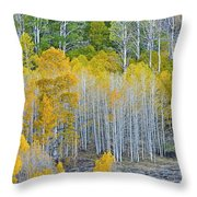 Aspen Stand Throw Pillow by L J Oakes
