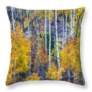 Aspen Tree Magic Cottonwood Pass Throw Pillow by James BO  Insogna