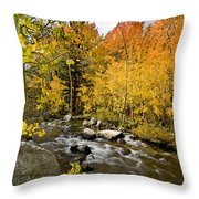 Aspens At Bishop Creek Throw Pillow by Cat Connor