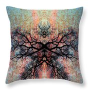 Aspire To Be Throw Pillow by Jan Amiss Photography