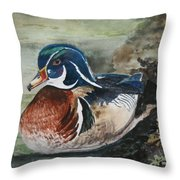 At Rest Throw Pillow by Betty-Anne McDonald
