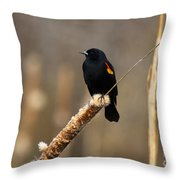 At Rest Throw Pillow by Mike  Dawson