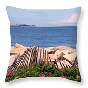 At The Beach Throw Pillow by Janice Drew