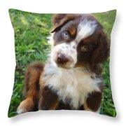 Aussie Double Trouble Throw Pillow by Kenny Francis