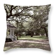 Austin Texas Southern Garden - Luther Fine Art Throw Pillow by Luther  Fine  Art