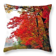 Autumn Along a Country Road Throw Pillow by Terri Gostola