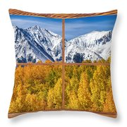 Autumn Aspen Tree Forest Barn Wood Picture Window Frame View Throw Pillow by James BO  Insogna