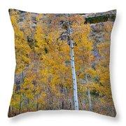 Autumn Aspens Throw Pillow by James BO  Insogna