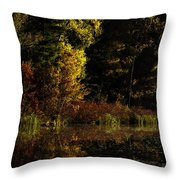 Autumn At It's Finest Throw Pillow by Thomas Young