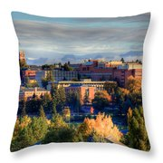 Autumn At Wsu Throw Pillow by David Patterson