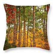 Autumn Canvas Throw Pillow by Carol Groenen