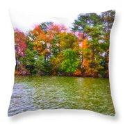 Autumn Color In Norfolk Botanical Garden 3 Throw Pillow by Lanjee Chee