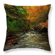 Autumn Creek Throw Pillow by Melissa Petrey