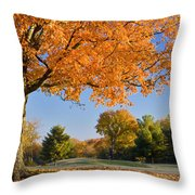 Autumn Dawn Throw Pillow by Brian Jannsen