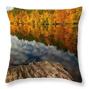 Autumn Day Throw Pillow by Karol Livote