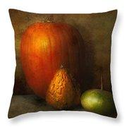 Autumn - Gourd - Melon Family  Throw Pillow by Mike Savad
