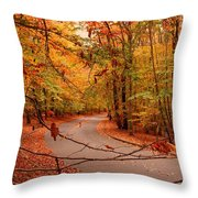 Autumn In Holmdel Park Throw Pillow by Angie Tirado