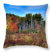 Autumn In The Adirondacks Throw Pillow by David Patterson