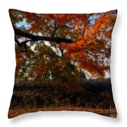 Autumn In The Country Throw Pillow by Inspired Nature Photography Fine Art Photography