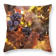 Autumn in the Vineyard Throw Pillow by Michele Steffey