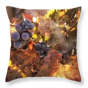 Autumn In The Vineyard Throw Pillow by Michele Steffey