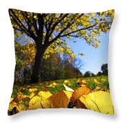 Autumn Landscape Throw Pillow by Elena Elisseeva