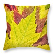 Autumn Maple Leaves Throw Pillow by Adam Romanowicz