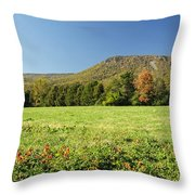 Autumn Massanutten Throw Pillow by Lara Ellis