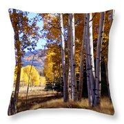 Autumn Paint Chama New Mexico Throw Pillow by Kurt Van Wagner