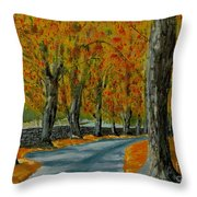 Autumn Pathway Throw Pillow by Anthony Dunphy