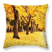 Autumn Perspective Throw Pillow by Carol Groenen