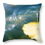 Autumn Ripples Throw Pillow by Lisa Knechtel