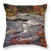 Autumn River Throw Pillow by Joann Vitali