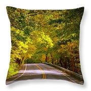 Autumn Road Throw Pillow by Carol Groenen