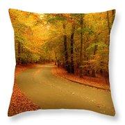 Autumn Serenity - Holmdel Park  Throw Pillow by Angie Tirado