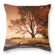 Autumn Simphony In France Throw Pillow by Sorin Apostolescu
