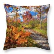 Autumn Splendor Throw Pillow by Bill Wakeley