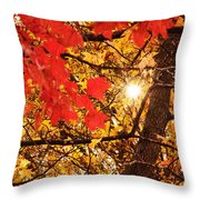Autumn Sunrise Painterly Throw Pillow by Andee Design