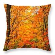 Autumn Tunnel Of Trees Throw Pillow by Terri Gostola