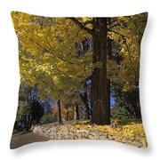 Autumn Wall - Fm000082 Throw Pillow by Daniel Dempster