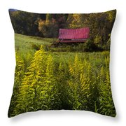Autumn Wildflowers Throw Pillow by Debra and Dave Vanderlaan