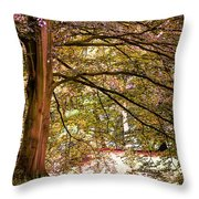 Autumnal Colors In The Summer Time. De Haar Castle Park Throw Pillow by Jenny Rainbow