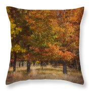 Autumn's Miracle Throw Pillow by Jeff Swanson
