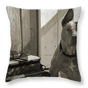 Avery Throw Pillow by Cindi Ressler